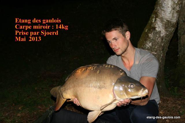 carpe-miroir-14kg-sjoerd-mai-2013_zoo