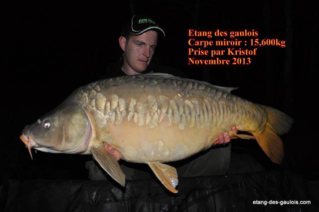 carpe-miroir-15kg600-kristof-nov2013_zoo