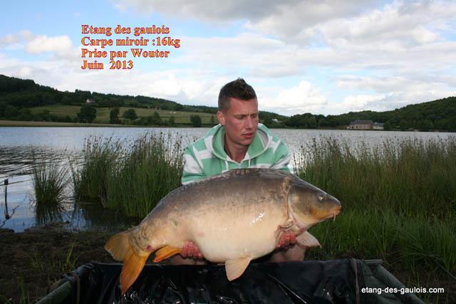 carpe-miroir-16kg00-Wouter-juin-2013-2_zoo