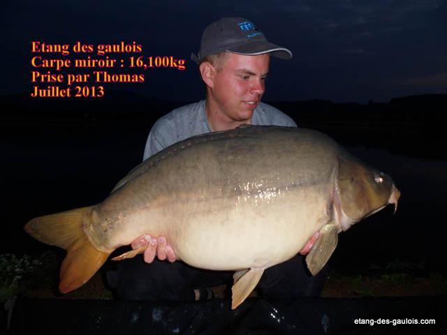 carpe-miroir-16kg100-thomas-juillet-2013-zoo