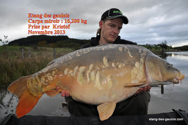carpe-miroir-16kg200-kristof-nov2013_zoo