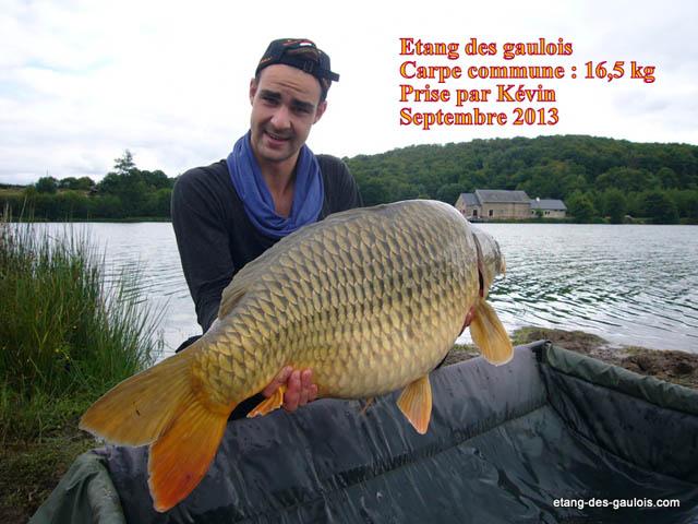 carpe-miroir-16kg500-Kevin-oct-2013_zoo