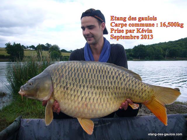 carpe-miroir-16kg500-kevin-oct-2013_zoo2