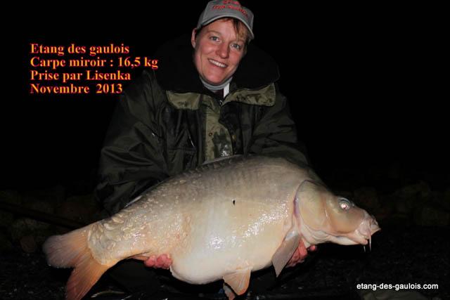 carpe-miroir-16kg500-lisenka-nov2013_zoo