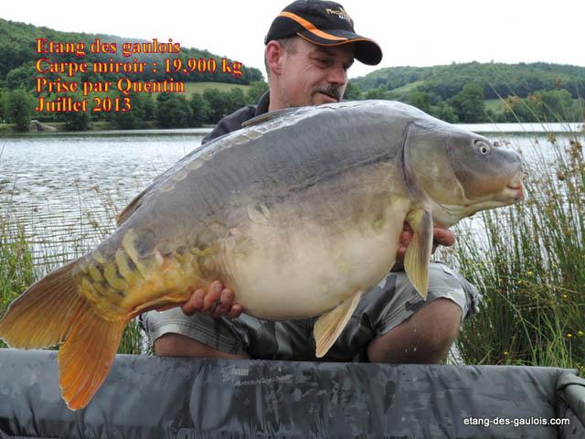 carpe-miroir-19kg900-quentin-juillet-2013_zoo