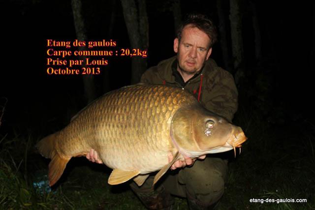 carpe-miroir-20kg200-louis-oct-2013_zoo