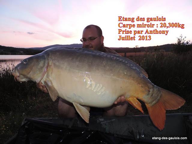carpe-miroir-20kg300-antony-juillet-2013_zoo