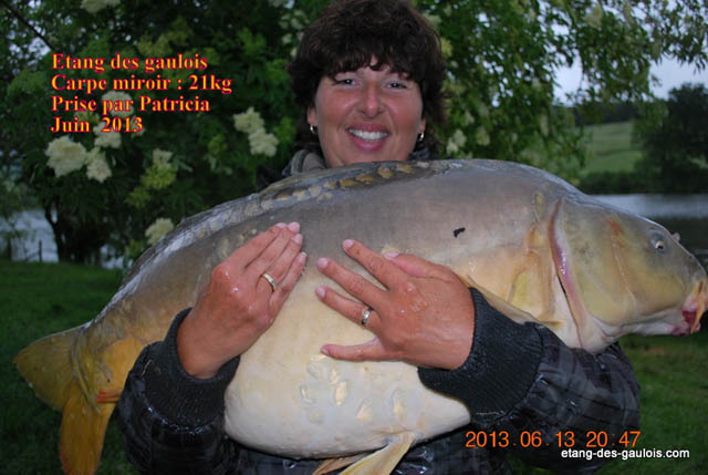 carpe-miroir-21kg-patricia-juin-2013_zoo