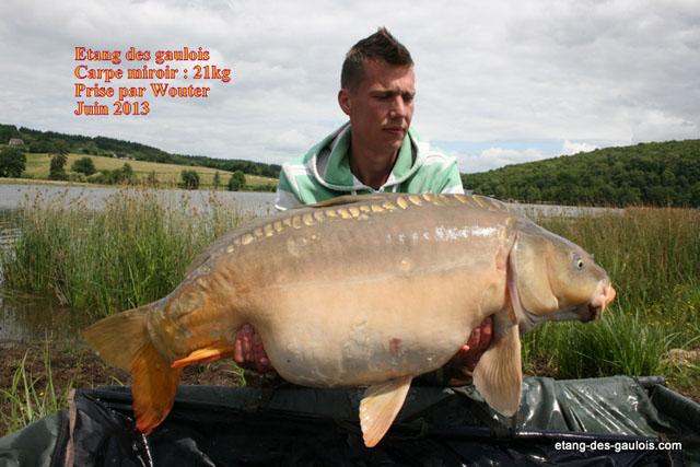 carpe-miroir-21kg-wouter-juin-2013_zoo