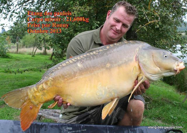 carpe-miroir-21kg400-Ronny-oct-2013_zoo