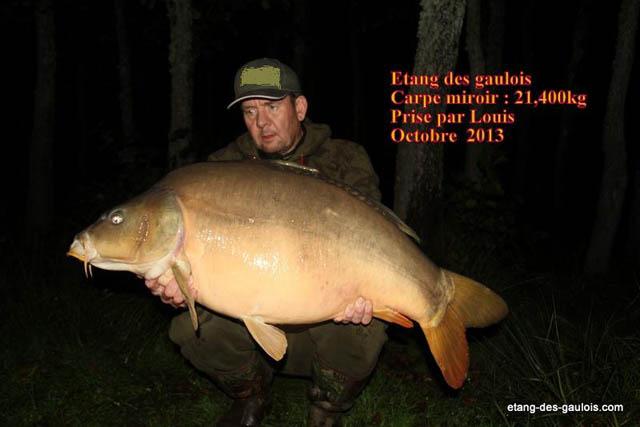 carpe-miroir-21kg400-louis-oct-2013_zoo