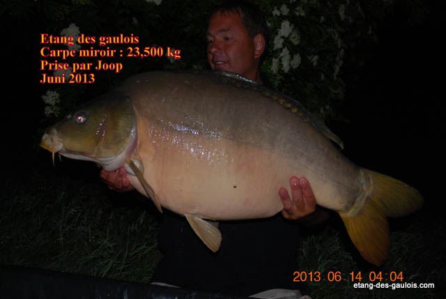 carpe-miroir-23kg500-joop-juin-2013_zoo