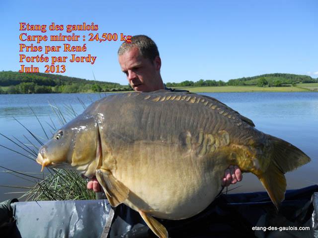 carpe-miroir-24kg500-Rene-Jordy-juin-2013_zoo