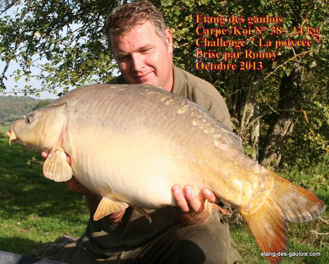 carpe-miroir-la-Poivree-13kg600-ronny-oct-2013_zoo
