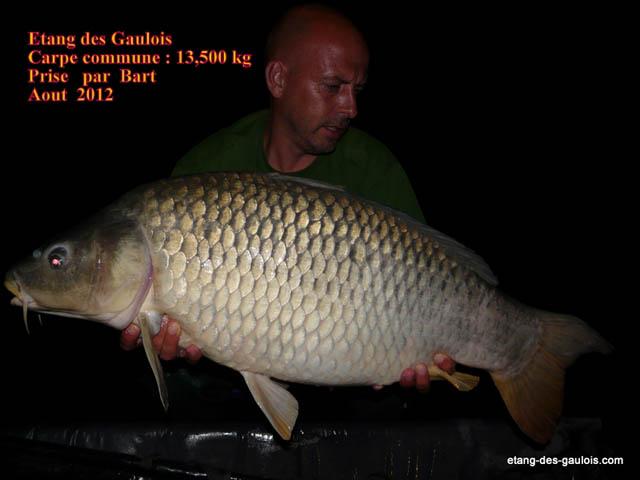 commune-13kg500-bart-aout2012_big