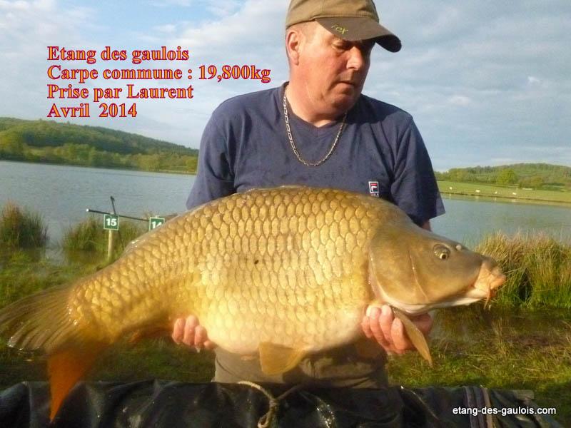 carpe-commune-19kg800-laurent-avril-2014