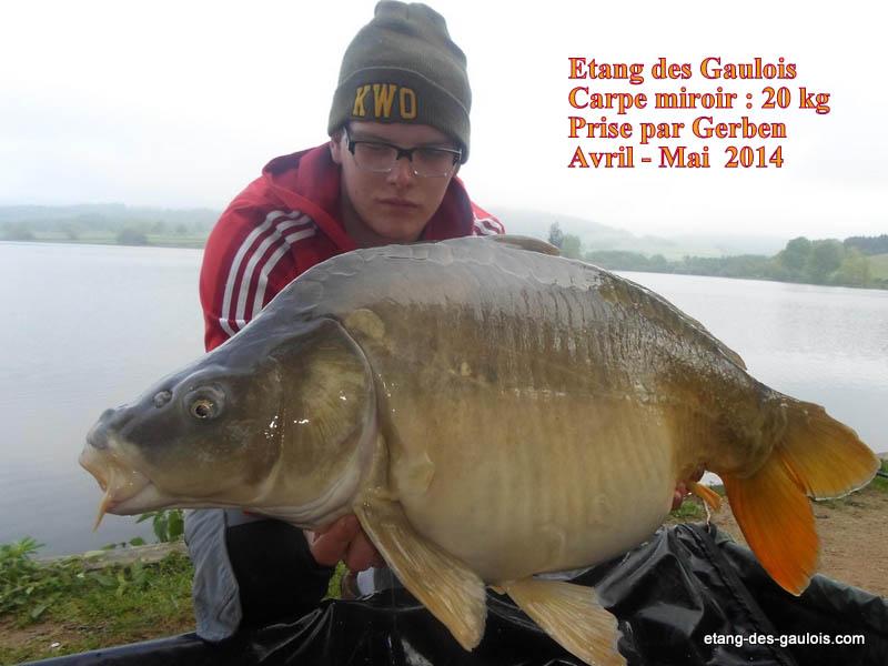 carpe-miroir-20kg-Gerben-mai-2014-team-karper