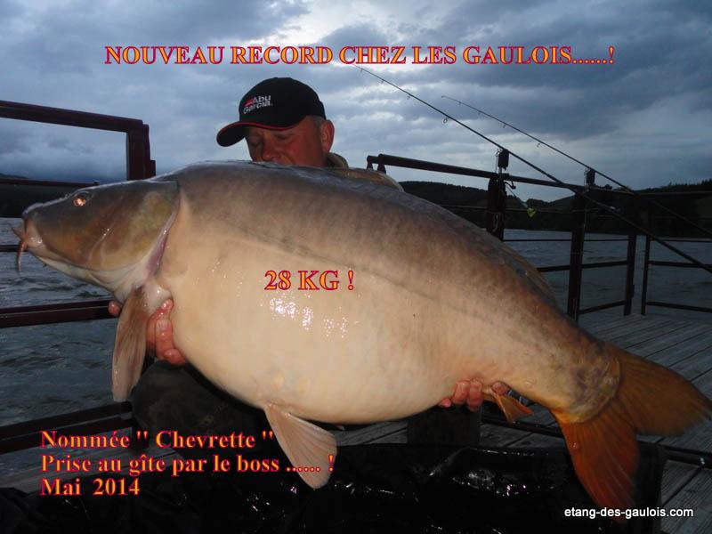 carpe-miroir-28kg-christophe-21-mai-2014-gite_001