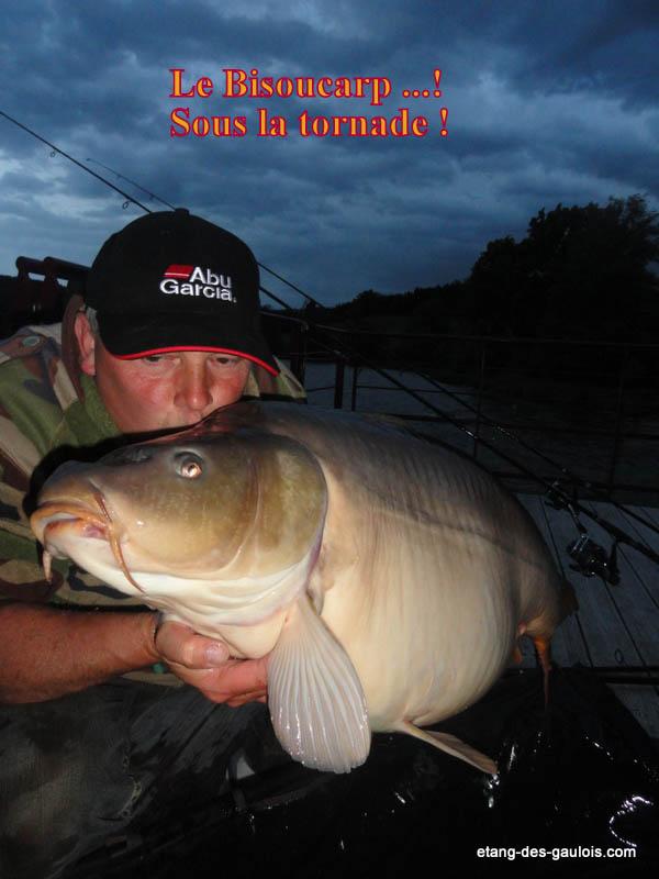 carpe-miroir-28kg-christophe-21-mai-2014-gite_003