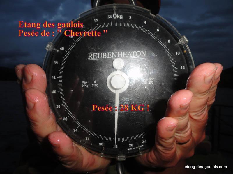 carpe-miroir-28kg-christophe-21-mai-2014-gite_004