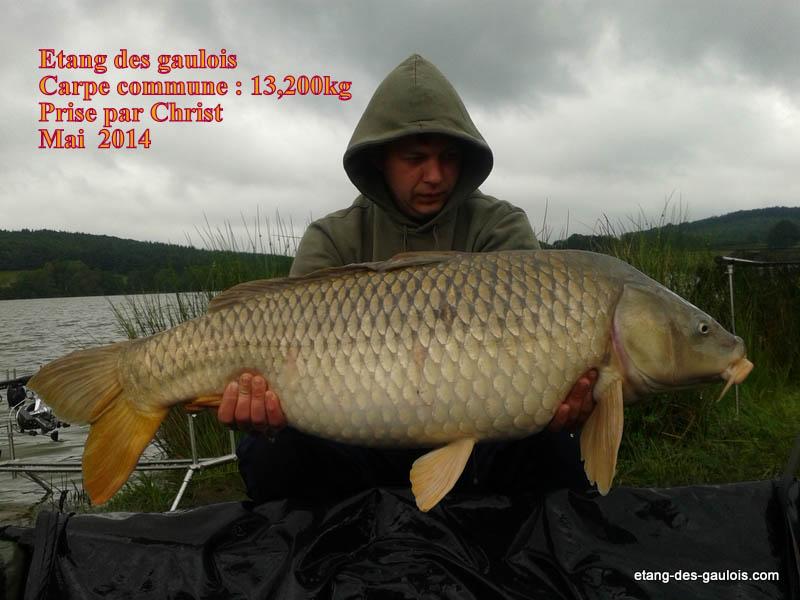 carpe-miroir-13kg200-christ-mai-2014