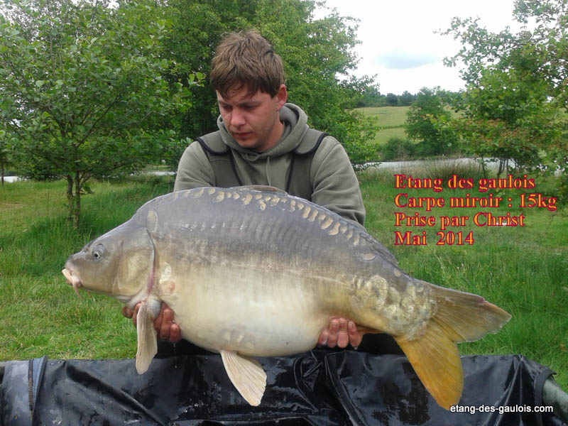 carpe-miroir-15kg-christ-mai-2014