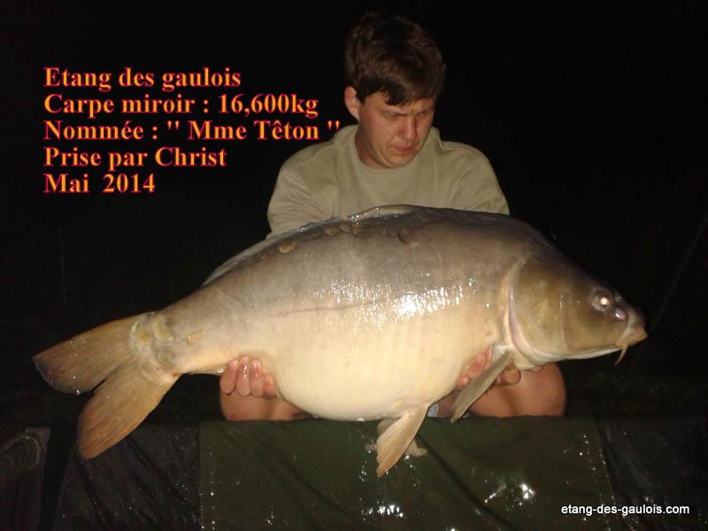 carpe-miroir-16kg600-christ-mai-2014