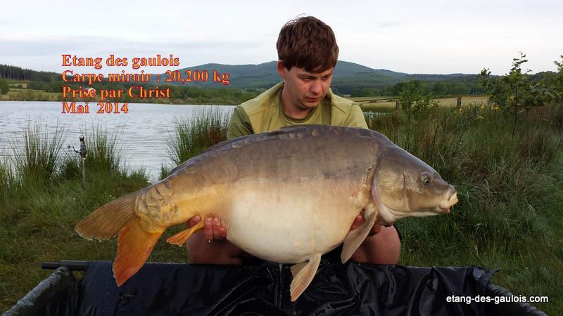 carpe-miroir-20kg200-christ-mai-2014