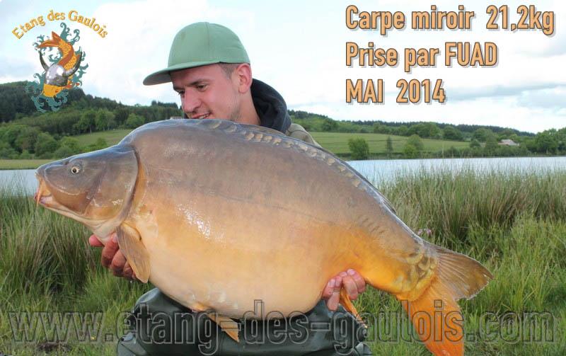 carpe-miroir-21kg200-Fuad-mai-2014